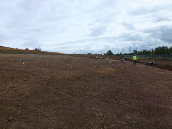 Site 4 and 5 blue flags mark postholes of roundhouse