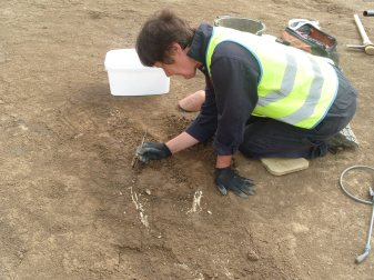 Excavating human remains can be a painstaking process! (site1)