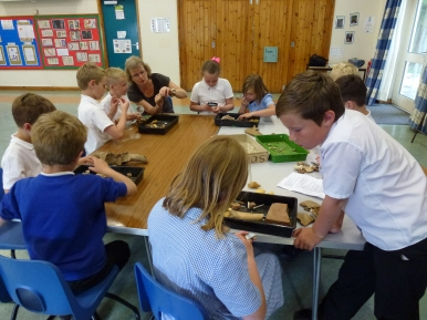 Children at Nether Stowey Primary School, sorting archaeological finds.