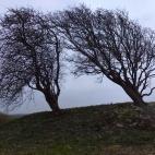 Dusk at Wick Barrow