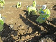 Excavation of the Dark Age cemetery at Hinkley Point