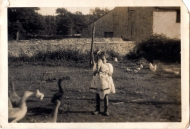 Mary amongst the poultry