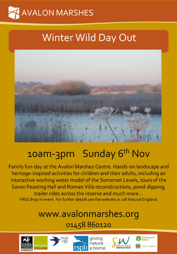 winter-wild-day-out-poster-2016-with-logos